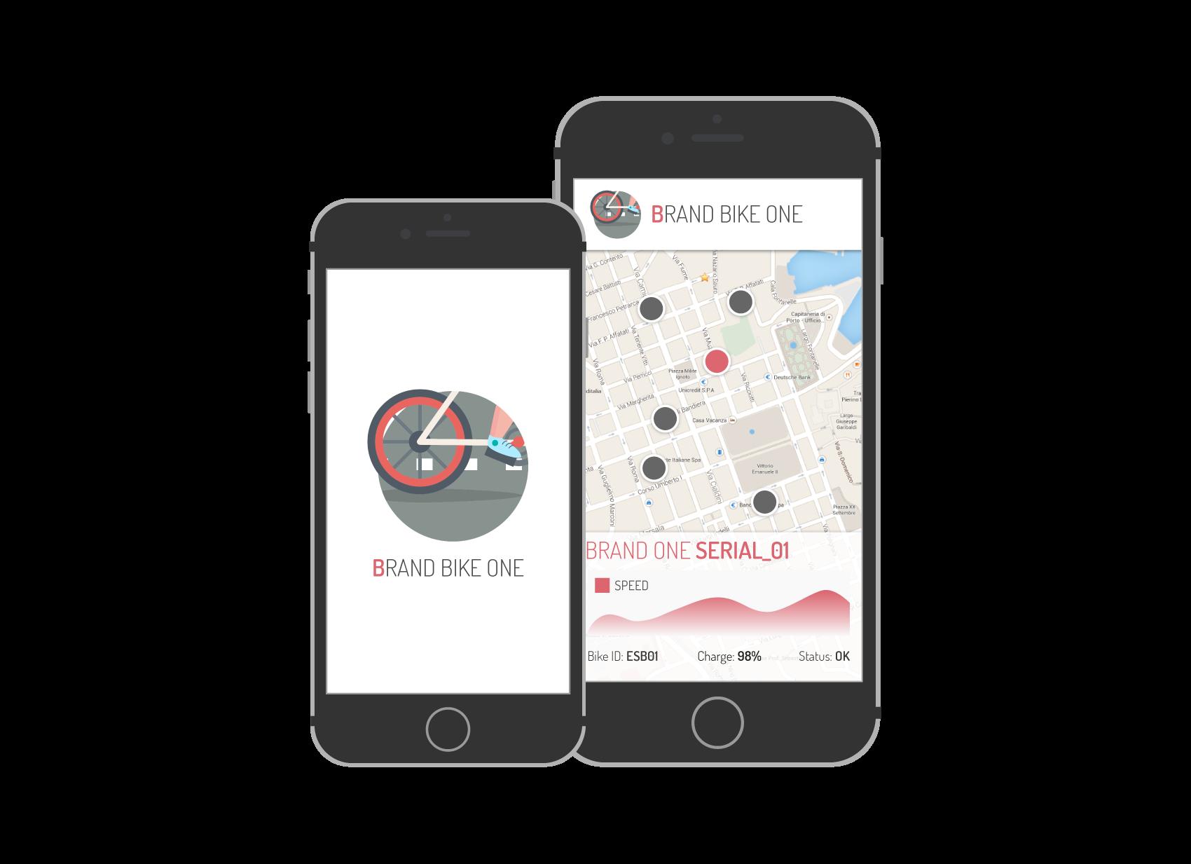fleet app customization esb